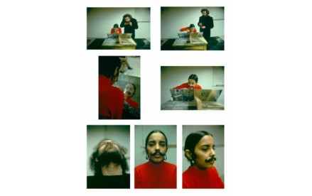 Ana Mendieta, Facial Hair Transplants, 1972