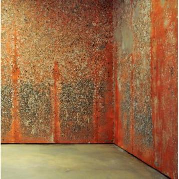 Michel Blazy, Mur de poils de Carotte, 2002