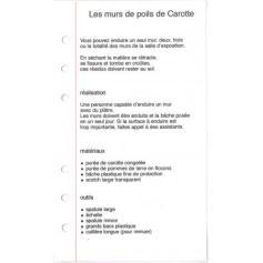 Michel Blazy, Mur de poils de Carottes, 2000, mode d'emploi