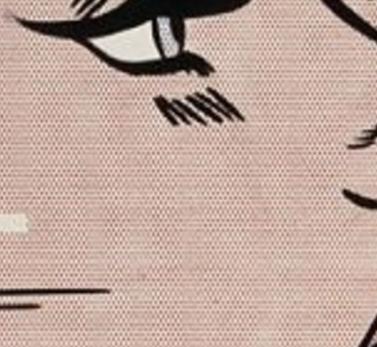 lichtenstein-detail-fond2-inthecar