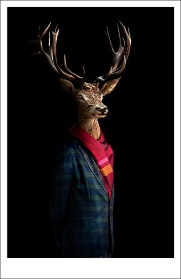 Miguel Vallinas, Retrato Número 46, photomontage