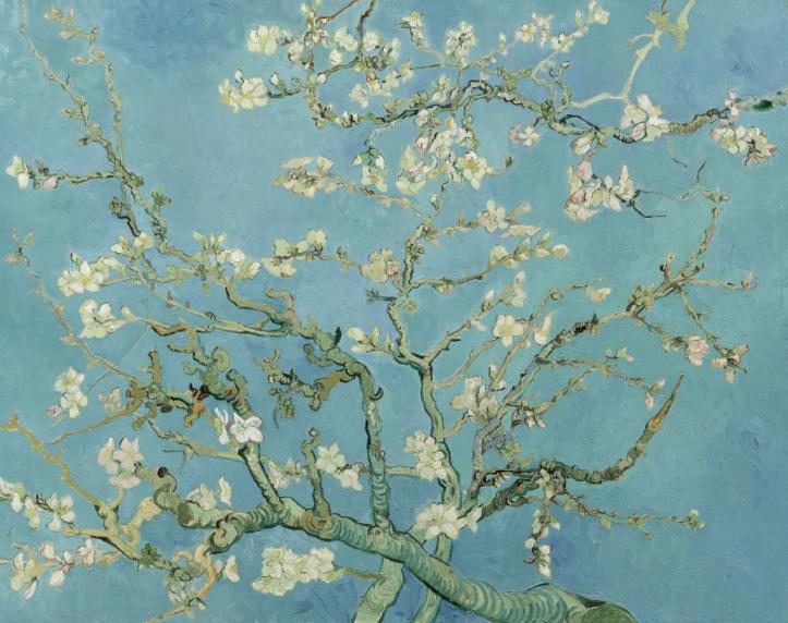 Vincent Van Gogh, Amandiers en fleurs, 1890