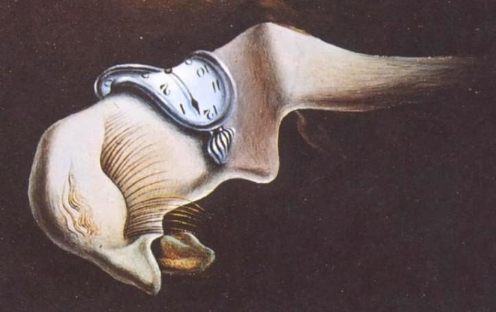 visageSalvador Dali, La persistance de la mémoire, 1931. Détail : le visage